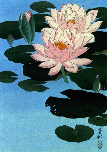 """Water Lily"" BIG Japanese Art Print by Koson Japanese"