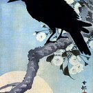 """Crow on Cherry Branch""HUGE Japanese Art Print by Koson"