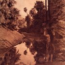 &quot;Palm Canyon&quot; Edward Curtis Native American Indian Art