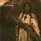 """Rush Gatherer"" Edward S. Curtis Native American Art"
