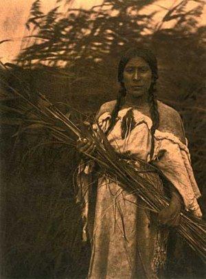 """Rush Gatherer"" Edward S. Curtis Native American Art"