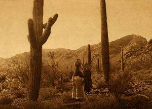 """Hasen Harvest Qahatik BIG"" Edward S.Curtis Indian Art"