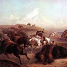 """Buffalo Hunt""  Native American Indian Art Print Bodmer"