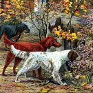 """English  & Irish Setter"" by Louis Agassiz Fuertes Art"
