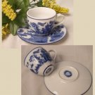 BLUE WILLOW Ceramic Tea Cup and Saucer - 194-973063