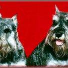 LP-2178 Schnauzer Dog Pet Novelty License Plate