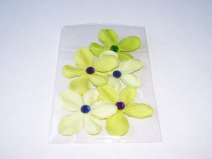 Daisy 5 � Petite Limes - Assorted No. 1