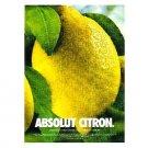 ABSOLUT CITRON Vodka Magazine Ad DEWDROPS