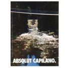 ABSOLUT CAPILANO Vodka Magazine Ad