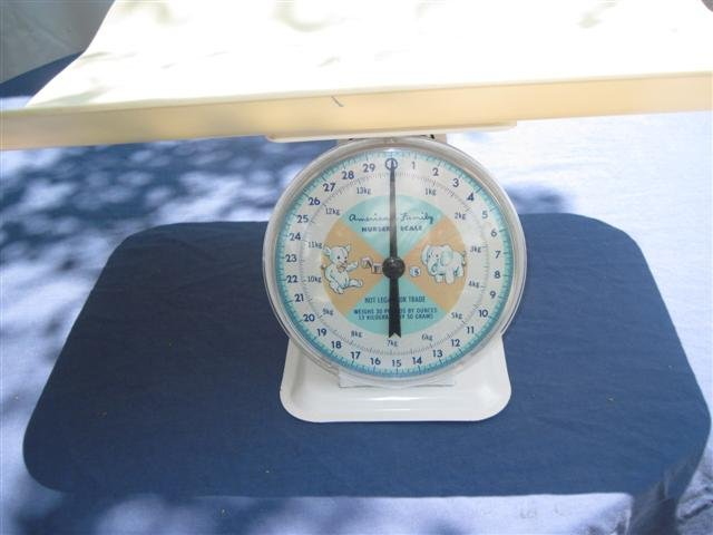 Vintage Scale-American Family Nursery Scale