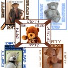 Choose TEDDY BEAR DiShWaSheR Dirty Clean MAGNET