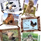 Pick ANIMAL Cow Horse Pig DiShWaSheR Dirty Clean MAGNET