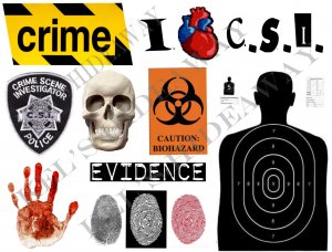 Set of 11 CSI Crime Lab Police Evidence STICKERS Labels