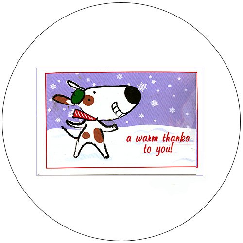 """Cute Snow Dog Greeting Postcards: """"Best Served Chilled"""" 12 Ct. - No. MGC209CC - mjZOOM"""
