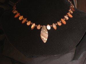 #43--Copper Shells kinda wild.......