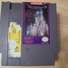 DISNEY ADVENTURES IN THE MAGIC KINGDOM (NES) TESTED