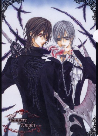 Vampire Knight Clear File Zero & Kaname clearfile