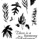 I/O Clear - Harmony in Autumn
