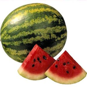 Giant oval shaped sweet WATERMELON  10 seeds