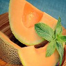 BULK North American CANTALOUPE 75 seeds