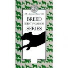 Breed Identification Series: Terrier Group (Volume 4) by The American Kennel Club