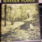 USING WAYSIDE PLANTS  NELSON COON, VINTAGE HC/DJ