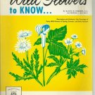 Wild flowers to know Gladys Friesner