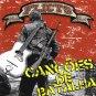 FLICTS - CANCOES DE BATALHA - AMIGOS - BRAZIL PUNK ROCK - BRASIL - CD