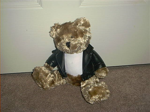 GALERIE BROWN PLUSH BEAR & LEATHER LIKE JACKET EXC CONDITION