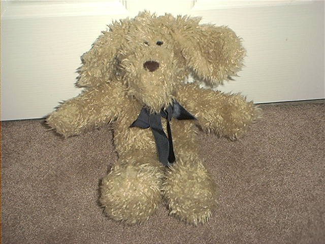THE BOYDS COLLECTION BEARS IN THE ATTIC SCRUFFY PUPPY PLUSH EXCELLENT CONDITION