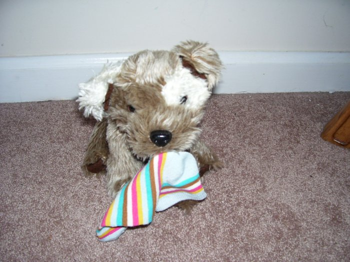"Animal Alley PUPPY WITH SOCK PLUSH EXCELLENT CONDITION!  9"" SITTING TOYS R US BRAND"