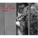 COOL CATS * 2008 * 20 MONTH WALL CALENDAR * NEW & SEALED!