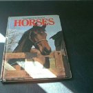 Everyone's COLOR Book of HORSES 1981 by Angela Sayer Hardcover