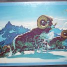 Eddie Bauer ROCKY MOUNTAIN BIGHORN Jigsaw Puzzle 1971 NEW IN BOX! 550 Pieces