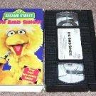 Sesame Street BIG BIRD SINGS * VHS * 1995 HARD TO FIND!