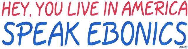 HEY, YOU LIVE IN AMERICA SPEAK EBONICS Bumper Sticker
