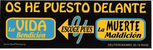 I HAVE SET BEFORE YOU LIFE & DEATH (SPANISH) Bumper Sticker