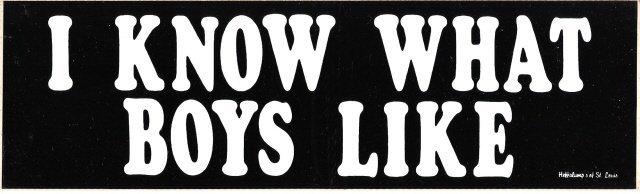 I KNOW WHAT BOYS LIKE Bumper Sticker