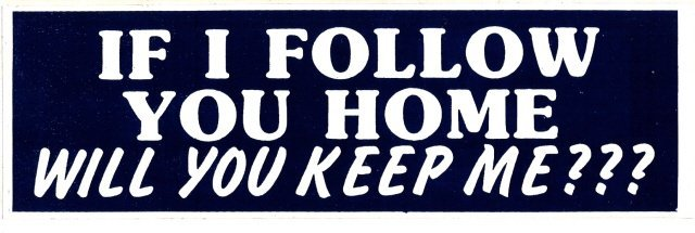 IF I FOLLOW YOU HOME WILL YOU KEEP ME? Bumper Sticker