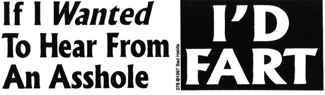 If I Wanted To Hear From An Asshole I'D FART Bumper Sticker