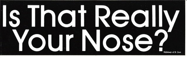 Is That Really Your Nose? Bumper Sticker