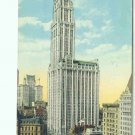 73604 Woolworth Building NY New York City Postcard