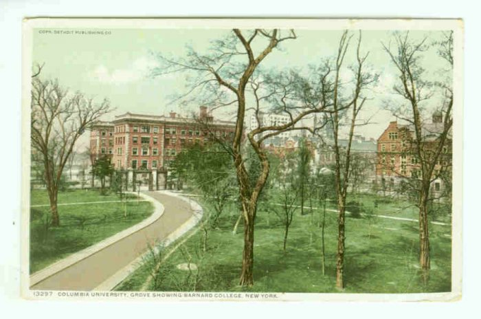 NY New York City Vintage Postcard Columbia University Grove Barnard College 1911