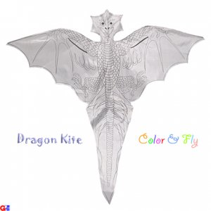2 Rayon Plain Dragon Kites For Coloring & Flying