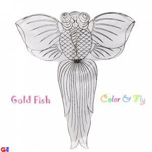 2 Flat Chinese Gold Fish Kites For Coloring & Flying