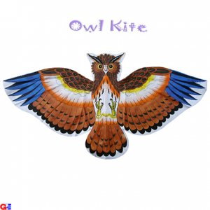2 Hand=Painted Owl Kites For Kids (DIY-OWL-3C)