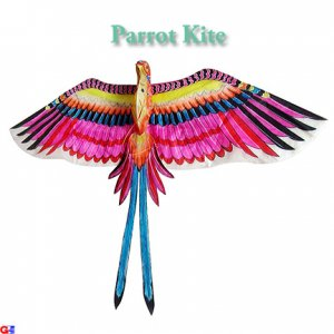 Large 3D Silk Parrot Kite - Pink