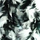 Black And White Feather BOA