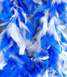 Blue and White Feather Boa
