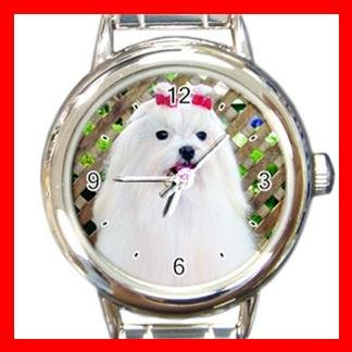 Maltese DOG Pet Animal Round Italian Charm Wrist Watch 324